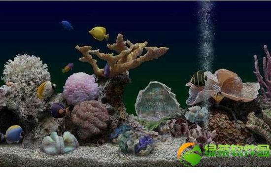 海底世界动态屏保 v3.1 pc中文版